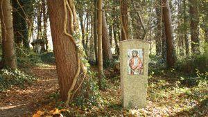 Pilgerweg-im-Wald-1