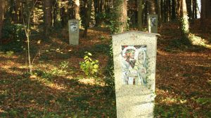 Pilgerweg-im-Wald-2