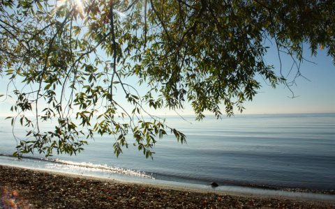 Wellen Strand